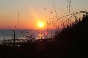 Plaża, palmy, morze i nurkowanie